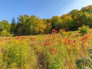 Lot for sale in Stoneham-et-Tewkesbury, Capitale-Nationale, 3060, boulevard  Talbot, 12875289 - Centris.ca