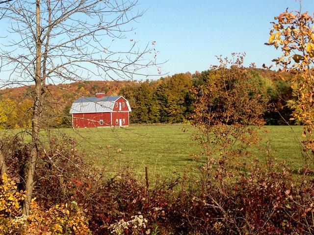 Farm for sale in Kiamika, Laurentides, 304, Chemin  Valiquette, 22280288 - Centris.ca