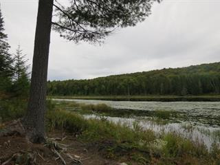 Land for sale in La Macaza, Laurentides, Chemin du 7e-Rang, 17106586 - Centris.ca