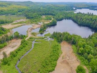 Lot for sale in Wentworth-Nord, Laurentides, Rue du Domaine, 11080818 - Centris.ca