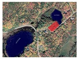 Lot for sale in Saint-Gabriel-de-Brandon, Lanaudière, Chemin du Lac-Hamelin, 24786022 - Centris.ca