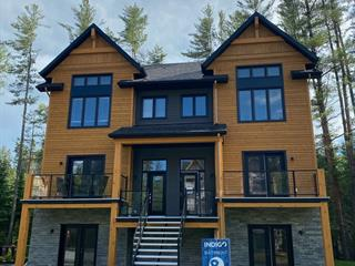 Condo à vendre à Mont-Tremblant, Laurentides, 571, Rue  Charlie-Forbell, 20308877 - Centris.ca