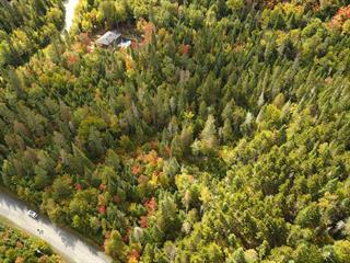 Terrain à vendre à Sainte-Marguerite-du-Lac-Masson, Laurentides, Rue du Sommet-de-la-Rivière, 17407401 - Centris.ca