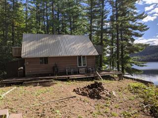 Maison à vendre à Waltham, Outaouais, 51, Chemin du Lac-Vert, 17980296 - Centris.ca