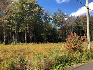 Terrain à vendre à Fossambault-sur-le-Lac, Capitale-Nationale, Rue  Grandpré, 27859297 - Centris.ca