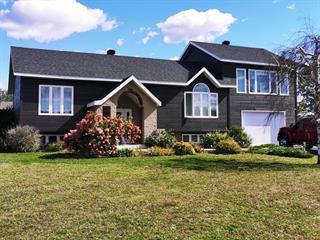 Maison à vendre à Sainte-Victoire-de-Sorel, Montérégie, 32, Rue  Alphonse, 28417627 - Centris.ca