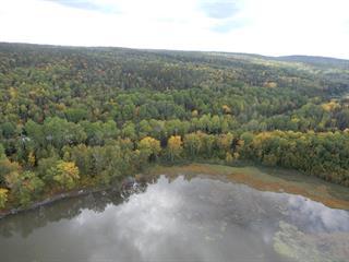 Land for sale in Rémigny, Abitibi-Témiscamingue, Route  391, 25374731 - Centris.ca