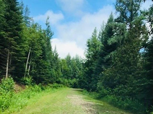 Terrain à vendre à Morin-Heights, Laurentides, Chemin du Lac-Bouchette, 12288790 - Centris.ca