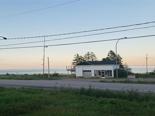 House for sale in Port-Cartier, Côte-Nord, 2236, Route  Jacques-Cartier, 12579986 - Centris.ca
