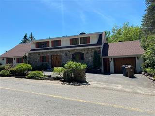 Maison à vendre à Piedmont, Laurentides, 970, Chemin des Pierres, 23241500 - Centris.ca