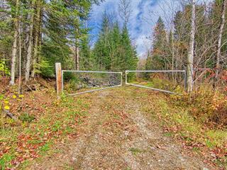 Terre à vendre à Chénéville, Outaouais, Montée  Archambault, 18013608 - Centris.ca