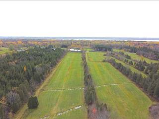 Terre à vendre à Deschambault-Grondines, Capitale-Nationale, 2, 2e Rang Ouest, 14882899 - Centris.ca