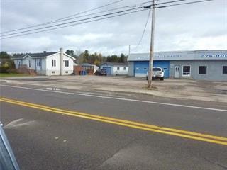 House for sale in Saint-Eugène-d'Argentenay, Saguenay/Lac-Saint-Jean, 248 - 250, Rue  Principale, 12689422 - Centris.ca