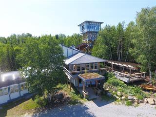 Maison à vendre à Saint-Urbain, Capitale-Nationale, 103A - 103B, Rang  Saint-Jérome, 23734665 - Centris.ca