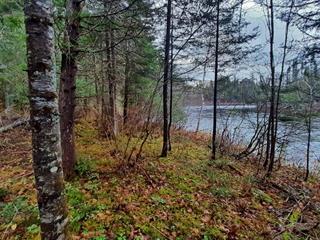 Terrain à vendre à Saint-Honoré, Saguenay/Lac-Saint-Jean, 4, Chemin de la Rive, 19720738 - Centris.ca