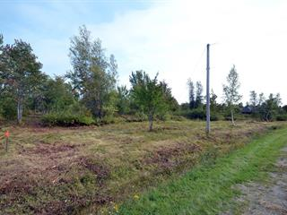 Lot for sale in Disraeli - Ville, Chaudière-Appalaches, Rue  Lavoie, 28955142 - Centris.ca