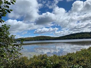 Terrain à vendre à Lac-Sergent, Capitale-Nationale, 1152, Chemin  Tour-du-Lac Nord, 22939018 - Centris.ca