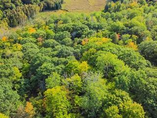 Lot for sale in Val-des-Monts, Outaouais, 36, Chemin de l'Aigle, 25630624 - Centris.ca