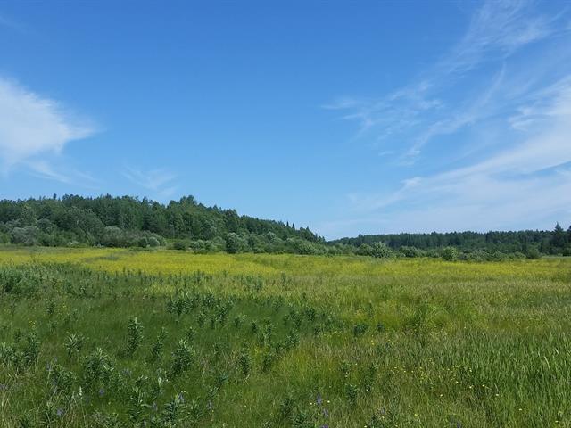 Terre à vendre à Notre-Dame-de-Lorette, Saguenay/Lac-Saint-Jean, 9, Rang  Saint-Charles, 27486831 - Centris.ca