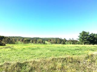 Lot for sale in Notre-Dame-de-la-Salette, Outaouais, Chemin du Quatuor, 27655641 - Centris.ca