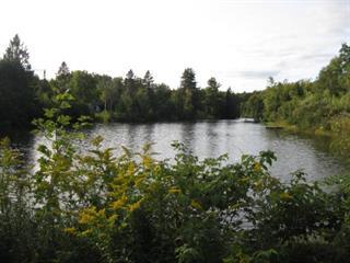 Terrain à vendre à Saint-Boniface, Mauricie, Chemin du Lac-des-Îles, 13120014 - Centris.ca