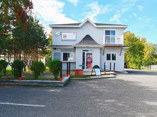 Maison à vendre à Saint-Casimir, Capitale-Nationale, 555, boulevard de la Montagne, 15120172 - Centris.ca