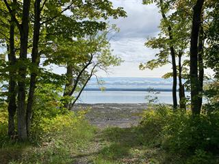 Lot for sale in Saint-Jean-de-l'Île-d'Orléans, Capitale-Nationale, Chemin des Mauries, 25478407 - Centris.ca