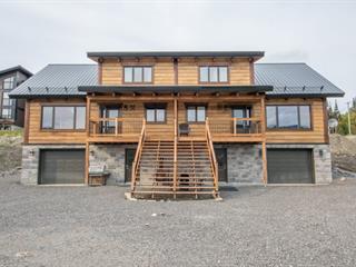 Maison à vendre à Saint-David-de-Falardeau, Saguenay/Lac-Saint-Jean, 02, Rue de Méribel, 13331485 - Centris.ca