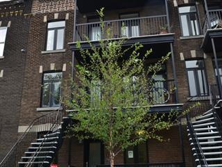 Triplex à vendre à Montréal (Le Sud-Ouest), Montréal (Île), 513 - 517, Rue du Parc-Marguerite-Bourgeoys, 28395965 - Centris.ca