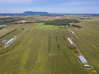 Terre à vendre à Saint-Alphonse-de-Granby, Montérégie, 254Z, Rue  Principale, 13180408 - Centris.ca