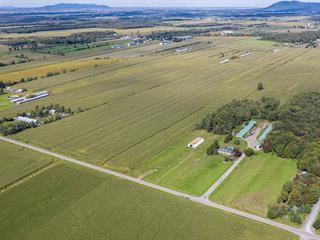 Terre à vendre à Saint-Alphonse-de-Granby, Montérégie, 260Z, Rue  Principale, 25509722 - Centris.ca