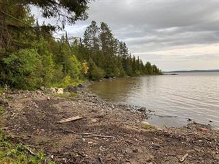 Terrain à vendre à Saint-Bruno-de-Guigues, Abitibi-Témiscamingue, Chemin de la Baie-de-la-Mine, 9136008 - Centris.ca