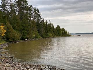 Terrain à vendre à Saint-Bruno-de-Guigues, Abitibi-Témiscamingue, Chemin de la Baie-de-la-Mine, 11469270 - Centris.ca