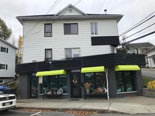 Triplex for sale in Alma, Saguenay/Lac-Saint-Jean, 590, Rue  Harvey Ouest, 16440183 - Centris.ca