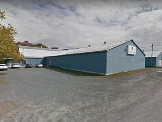 Bâtisse industrielle à vendre à Saint-Léonard-d'Aston, Centre-du-Québec, 50, Rue  Courchesne, 21543431 - Centris.ca