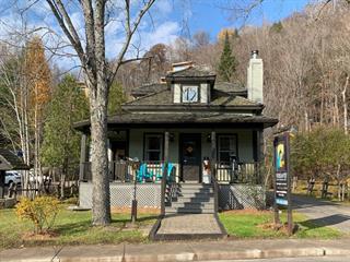 Commercial building for sale in Mont-Tremblant, Laurentides, 2004, Chemin du Village, 12278457 - Centris.ca