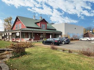 Bâtisse commerciale à vendre à Saint-Alphonse-de-Granby, Montérégie, 136, Rue des Érables, 21158100 - Centris.ca