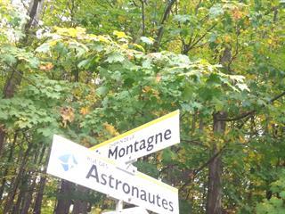 Lot for sale in Rigaud, Montérégie, Chemin de la Montagne, 25671672 - Centris.ca