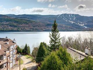 Condo / Apartment for rent in Mont-Tremblant, Laurentides, 121, Rue  Cuttle, apt. 493, 14808782 - Centris.ca