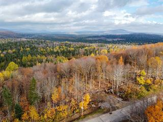 Lot for sale in Shannon, Capitale-Nationale, Rue  Mountain View, 28266632 - Centris.ca