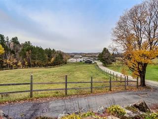 Fermette à vendre à Ripon, Outaouais, 2 - 9, Chemin de la Forge, 17873076 - Centris.ca