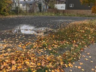 Terrain à vendre à Montréal (Rivière-des-Prairies/Pointe-aux-Trembles), Montréal (Île), 9370, boulevard  Gouin Est, 22887917 - Centris.ca