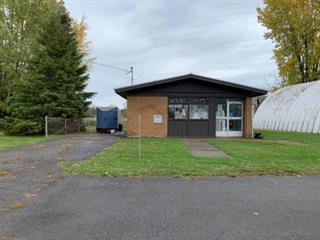 Bâtisse commerciale à vendre à Hinchinbrooke, Montérégie, 2855, Chemin d'Athelstan, 23916220 - Centris.ca