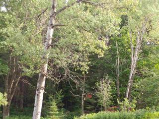 Terrain à vendre à Saint-Côme, Lanaudière, Chemin de la Belle-Vue, 21200529 - Centris.ca
