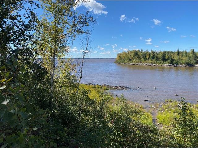 Terrain à vendre à La Motte, Abitibi-Témiscamingue, Chemin de la Pointe-aux-Goélands, 14360132 - Centris.ca