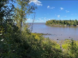 Lot for sale in La Motte, Abitibi-Témiscamingue, Chemin de la Pointe-aux-Goélands, 16325475 - Centris.ca