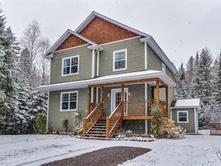 House for sale in Sainte-Agathe-des-Monts, Laurentides, 252, Rue  Demontigny, 21313704 - Centris.ca