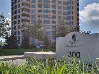 Condo / Apartment for rent in Montréal (Verdun/Île-des-Soeurs), Montréal (Island), 300, Avenue des Sommets, apt. 2005, 18434425 - Centris.ca