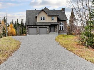 House for sale in Fossambault-sur-le-Lac, Capitale-Nationale, 6735, Route de Fossambault, 22023535 - Centris.ca