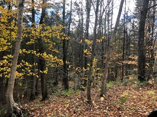 Lot for sale in Wentworth-Nord, Laurentides, Chemin du Lac-Rond, 18440891 - Centris.ca
